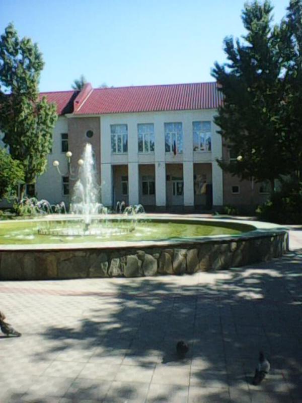 Этот фонтан - единственный «бассейн» в Медногорске
