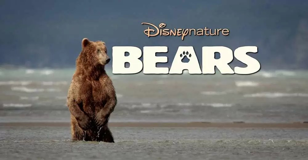 NVOC Filmavond 10 november 2015: Bears