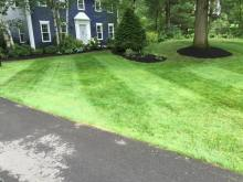 lawn mowing in albany
