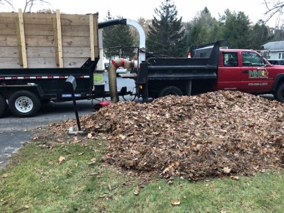 fall cleanup in albany, schenectady and surrounding areas