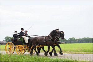 Ton Maat kampioen 2017 Paarden Authentiek