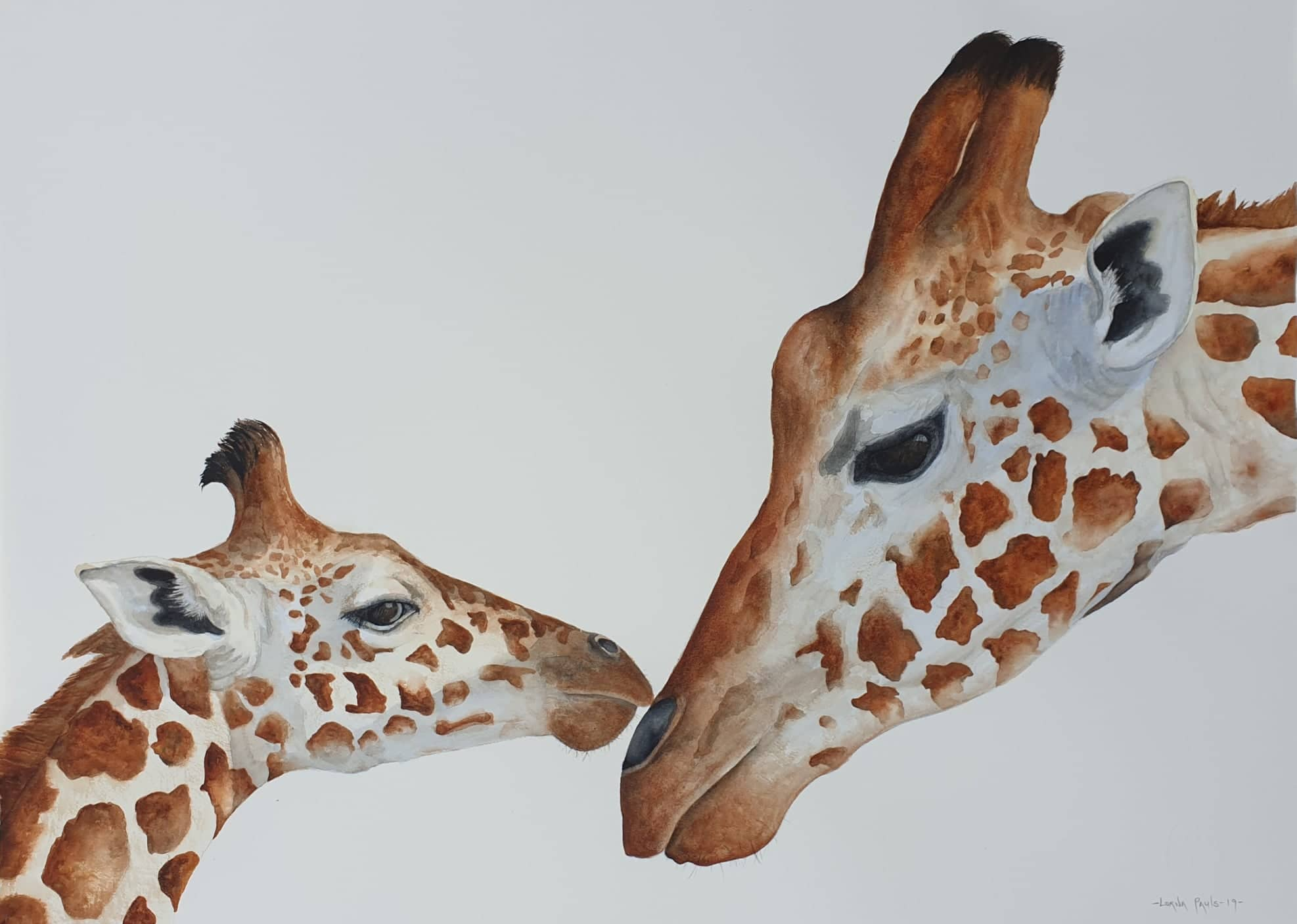 Mother and calf Giraffes in tender pose watercolour painting by Lorna Pauls