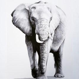 LP_Elephant_2