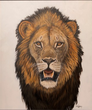Male Lion frontal by Nic van Rensburg
