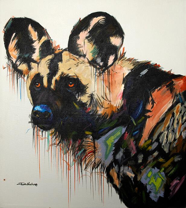 African Wild dog by Justin Mashora
