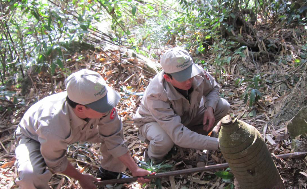 Clearing a large bomb on a hill, from February 2013 (Photo from PeaceTrees Vietnam)