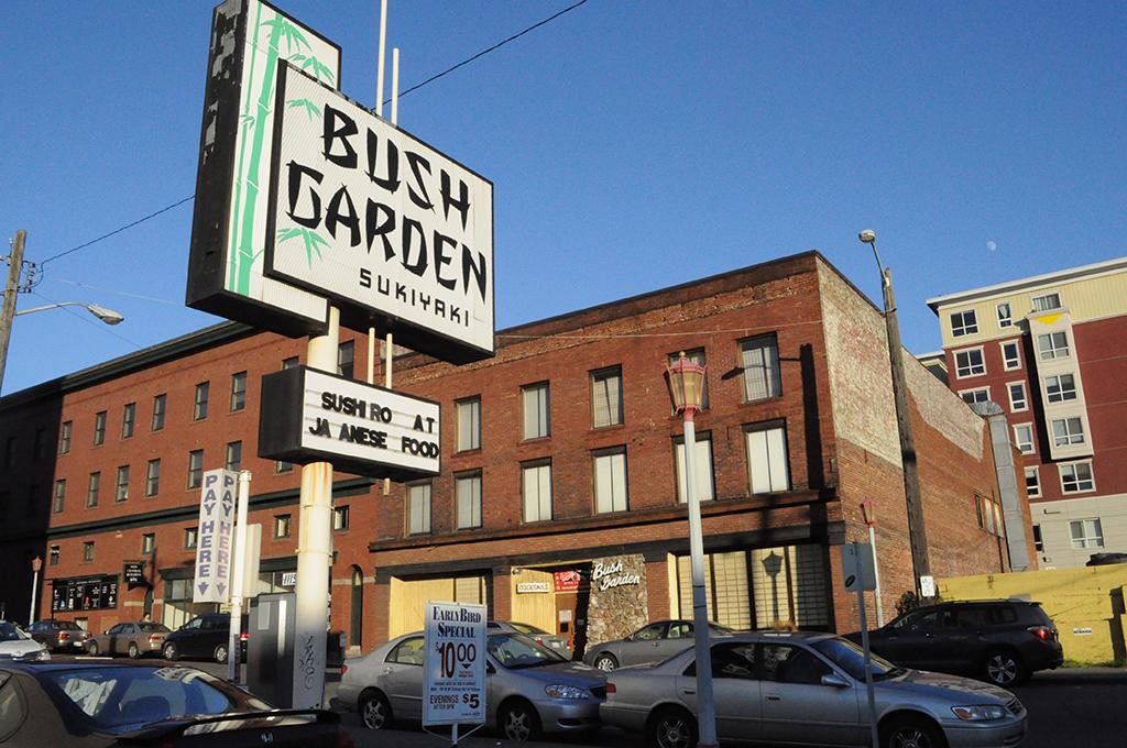 front-bush-garden