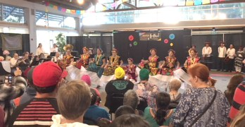 Renton Multicultural Festival