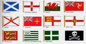 local-flags