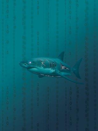 sharksuperhero