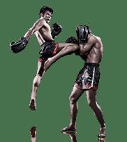 Muay Thai and Kickboxing? North