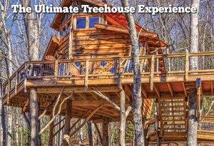 Banning Mills treehouse