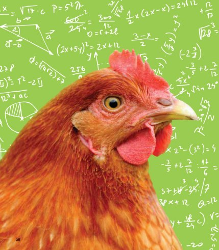 Chicken pictured on background with mathematical equations.