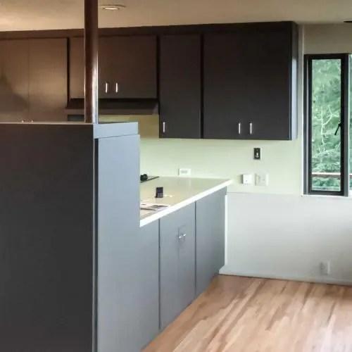 full.kitchen.renovation.before