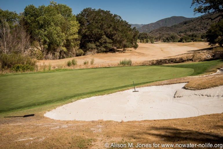 Example of a golf course with only greens irrigated.