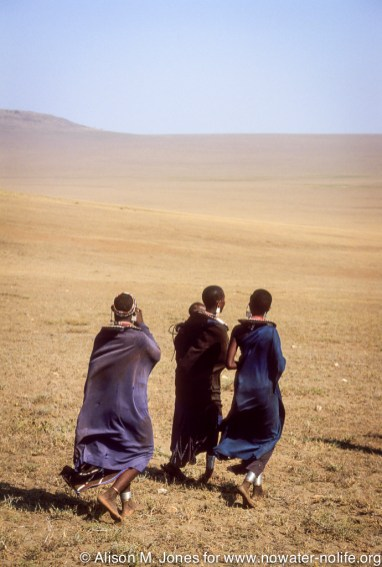 Tanzania: Ngorongoro Crater Conservation Area, Maasai women walking on plains