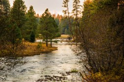 Metolius River Springs headwaters