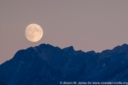 Canada: British Columbia, Kootenay Rockies, Columbia River Basin, full moon rising over Canadian Rocky Mountains, seen from Invermere