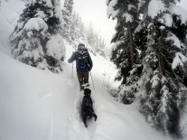 Trudging through the pow