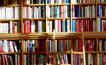 Bookshelf full of books