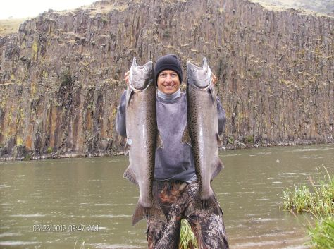 ANGLER ERIC STEIN DISPLAYS A PAIR OF HATCHERY SPRING CHINOOK CAUGHT OUT OF THE YAKIMA IN A RECENT SEASON. SUPPLEMENTATION WORK BY THE YAKAMA NATION HELPS PROVIDE SALMON OPPORTUNITY ON THE RIVER. (DAIWA PHOTO CONTEST)
