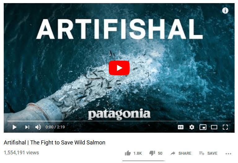 NWIFC's Loomis Pans Patagonia's Anti-Hatchery Movie
