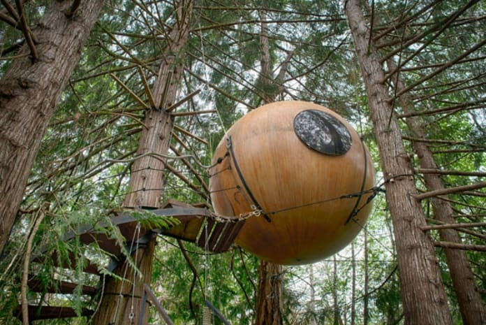 Sleeping In The Trees Northwest Travel Magazine   Spiral Staircase Around Tree Trunk   Treehouse Masters   Ter Kulve   Canopystair   Robert Mcintyre   Wooden Stairs