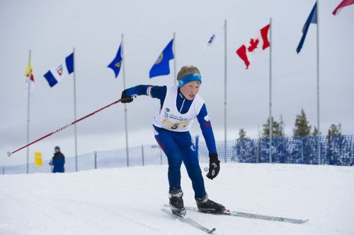 awg2012_nwt_ski_team_skier_flags_resized