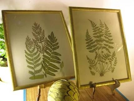 Set of Fern Botanical Prints
