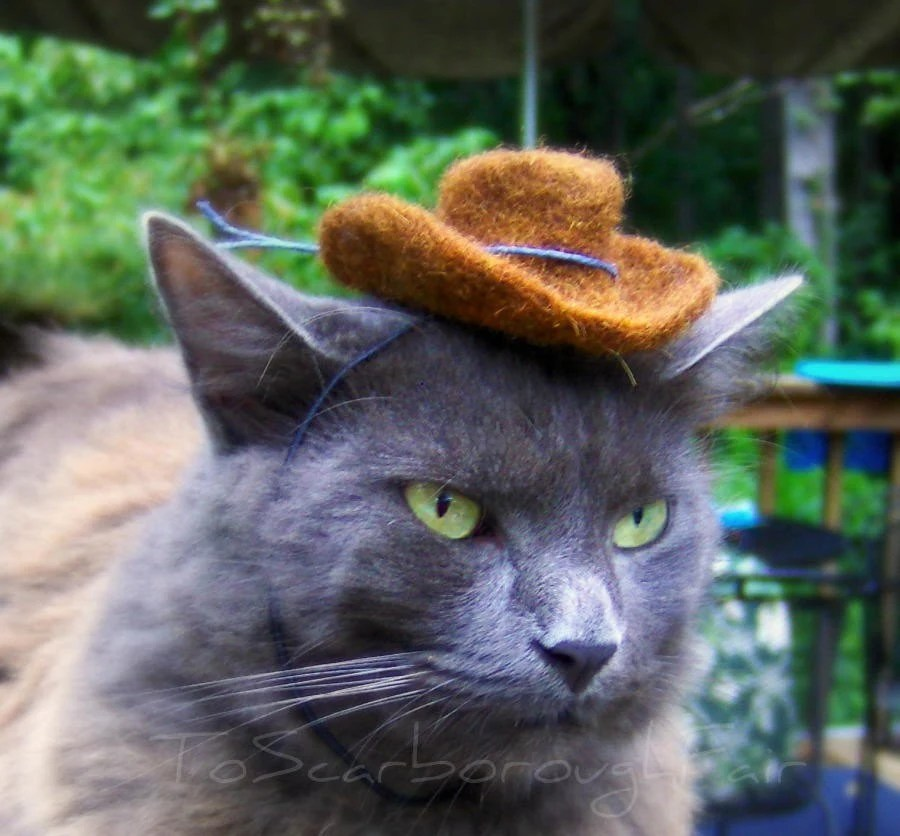 Cowboy Pet Hat - Brown Felted Mini Hat