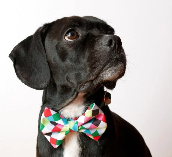 Colorful Cubes Bow Tie Dog Collar