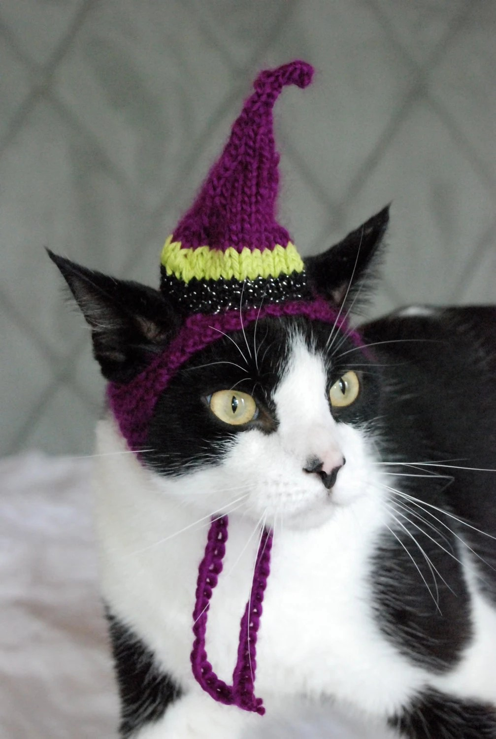 The Witch Cat Hat