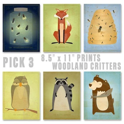 Woodland Critters Series - Pick Your Mix - Set of 3 Illustrations 8.5 in x 11 in