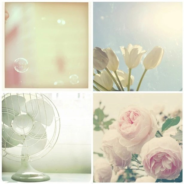 What Summer Means To Me  (Set of Four 5 by 5 Fine Art Photographs)