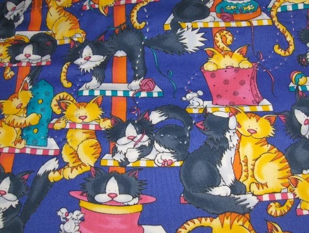 Cat's Play Baby Blanket