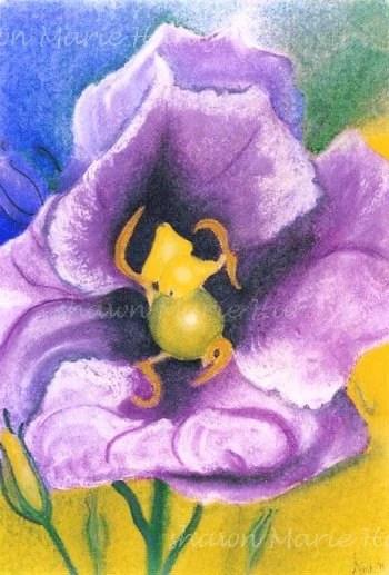 A Flower - Print