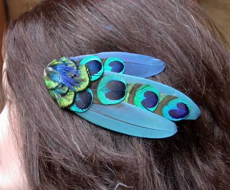 Blue Macaw and Peacock Eye Hair Clip