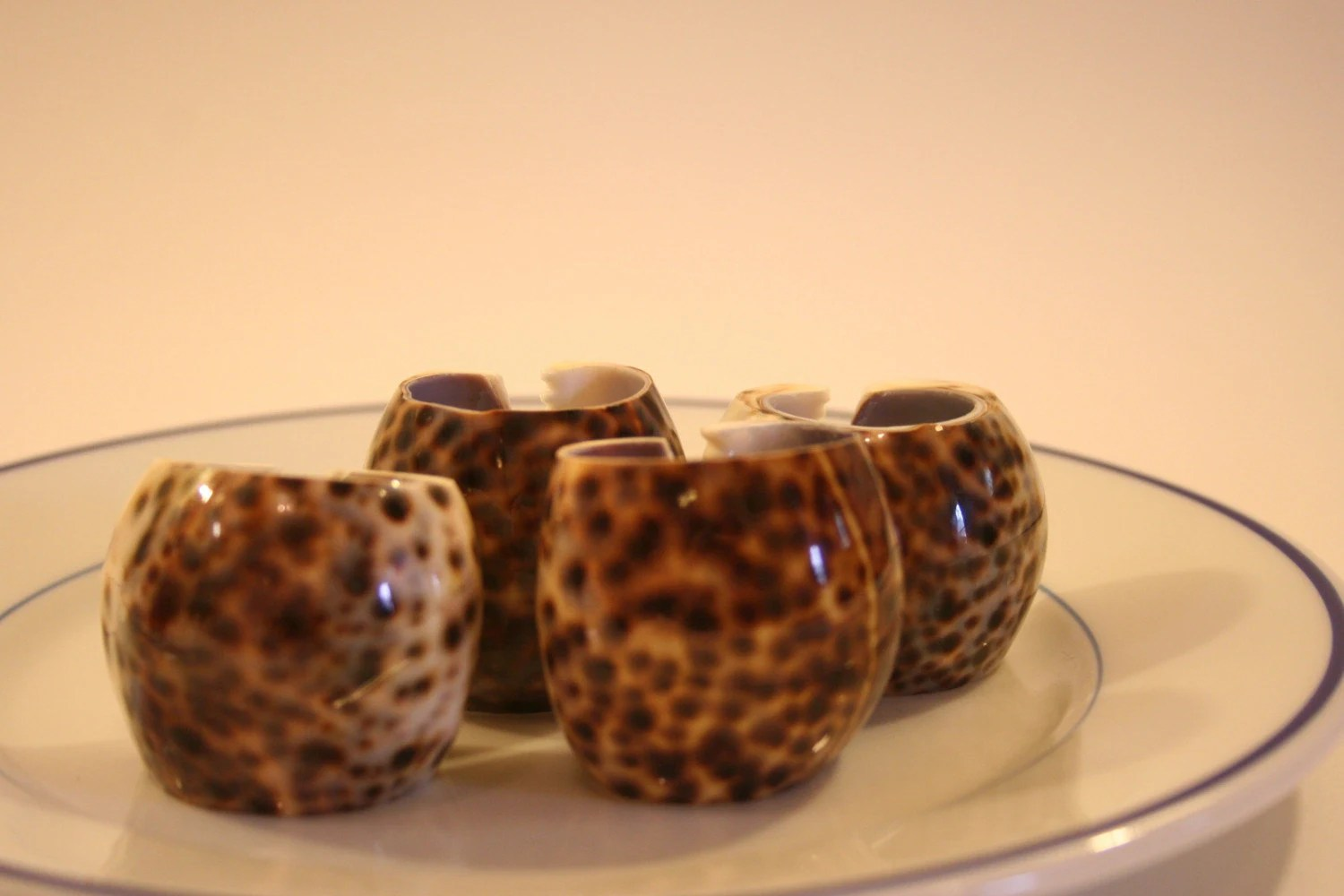 Set of 4 Tiger Cowrie Napkin Rings