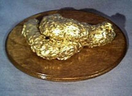 GOLDEN POOP AWARD PLAQUE - Gift - GOLD FAKE DOG POOP, Poo, Crap, Joke, Professional Prankster, Movie Prop, Brown Fido
