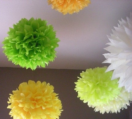 7-piece Citrus pom set