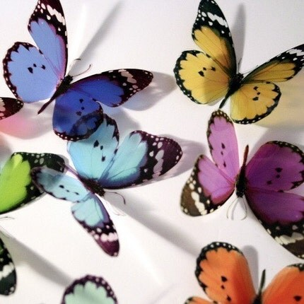 3D Transparent Butterflies