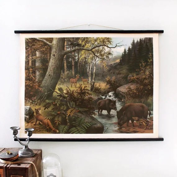 Vintage Art Chart - Forest Animals