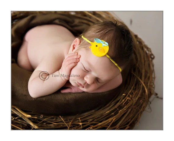 ChickaDee Felt Headband Photography Prop Gifts Newborn Infant