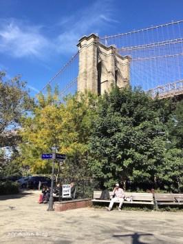 BrooklynB1