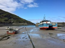 Port Isaac at low tide.