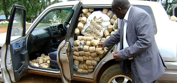 Kenyan police intercepting ELISHA OTIENO with a bhang haul worth over Sh3 million in Migori District(Photo: cable 08NAIROBI2671)