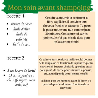 prepoo ou soin avant le shampoing
