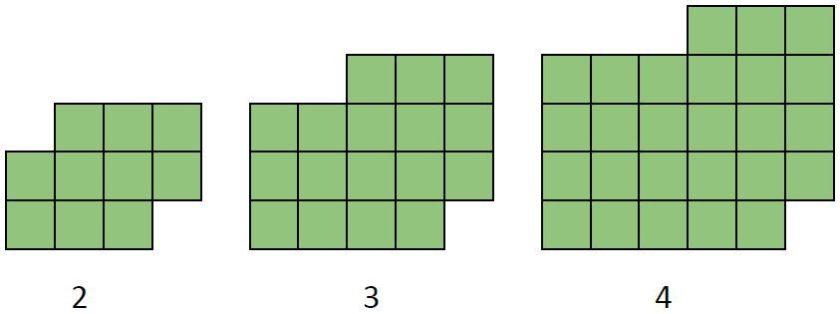 Visual Pattern 19 (version 2 - the buffalo)