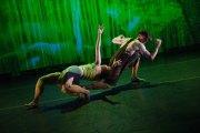 White Wave Dance Company presents Rising Choreographers