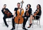 Carnegie Hall Citywide: Catalyst Quartet